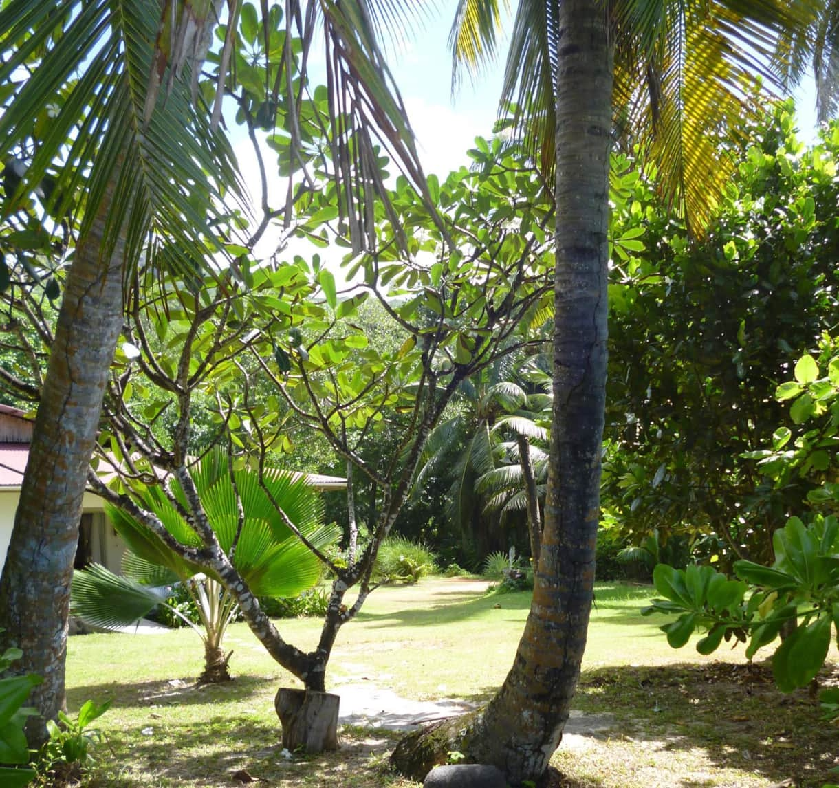 View of the Garden from the Beach