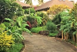 Garden walk to pool