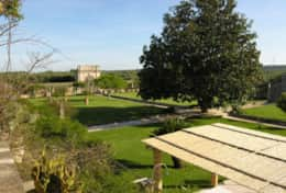 Casino Pisanelli MH - garden, outdoor space - Ruffano - Salento