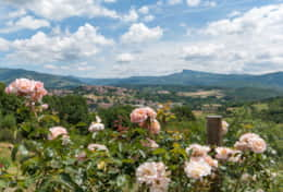 Holiday-in-Tuscany-Poppi-Villa-Borgo-Bibbiena (48)