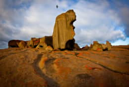 Remarkable Rocks with Bird flying over