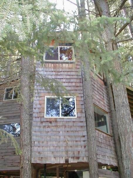 Two Story Tree House View (2)