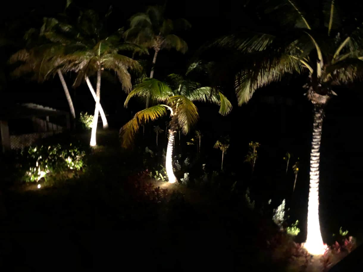 The beach front garden at night