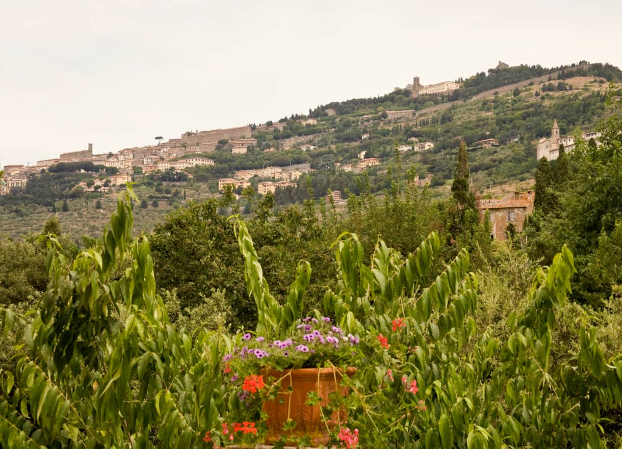 The view of Cortona from the terrace of this beautiful self catering villa for rent in Tuscany