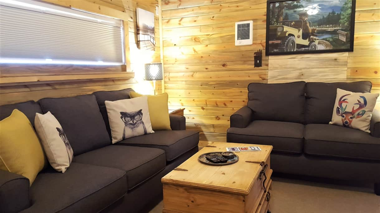Living area with new queen sleeper sofa