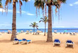 Go to the beach just 6 km and 15 minutes with bus. In compare of Las Americas the most beautiful wit